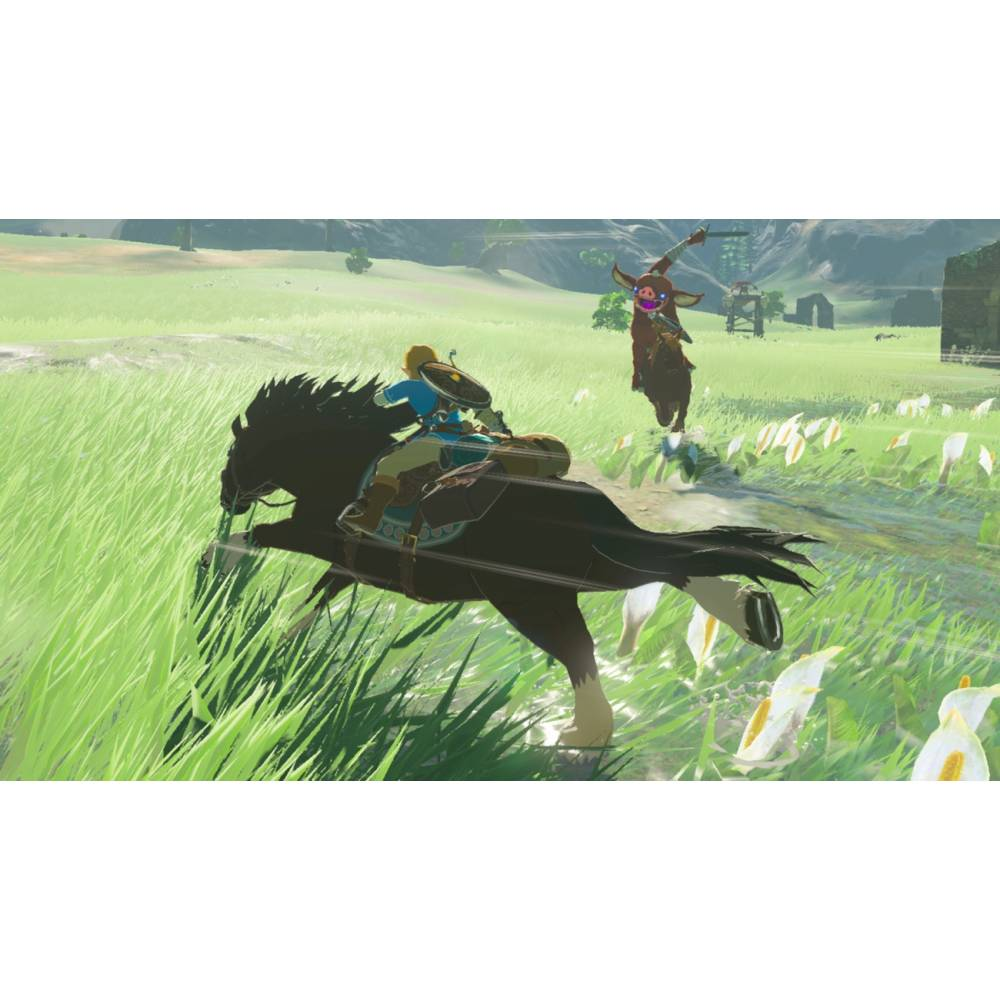 The Legend of Zelda: Breath of the Wild (Nintendo Switch) (Русская версия) (The Legend of Zelda: Breath of the Wild (Nintendo Switch) (RU)) фото 6